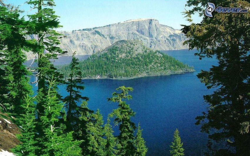 Crater Lake, ostrov Wizard, Oregon, ostrov, ihličnatý les