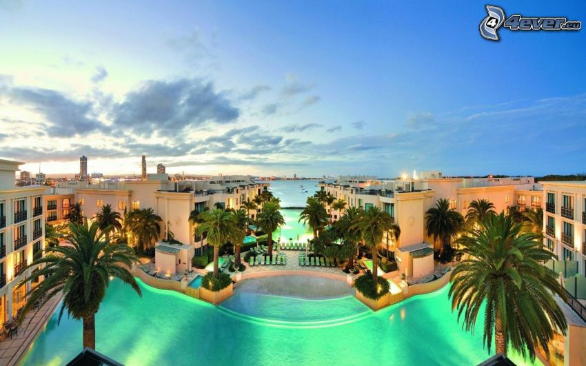 Gold Coast, bazén, palmy, Austrália