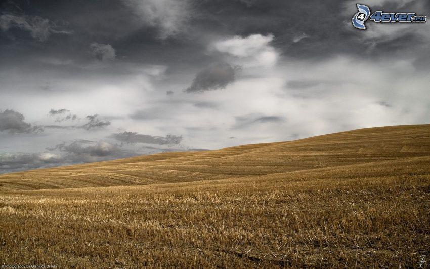 pokosené pole, mračná