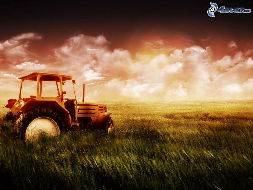 starý opustený traktor, pole, oblaky, podvečer