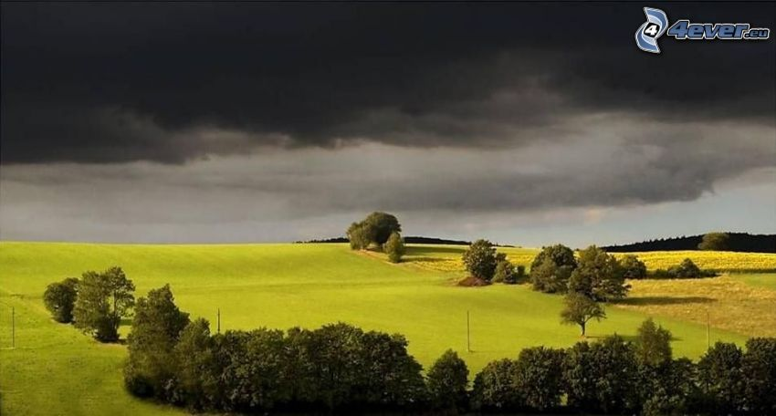 tmavé oblaky, lúka, stromy, búrka