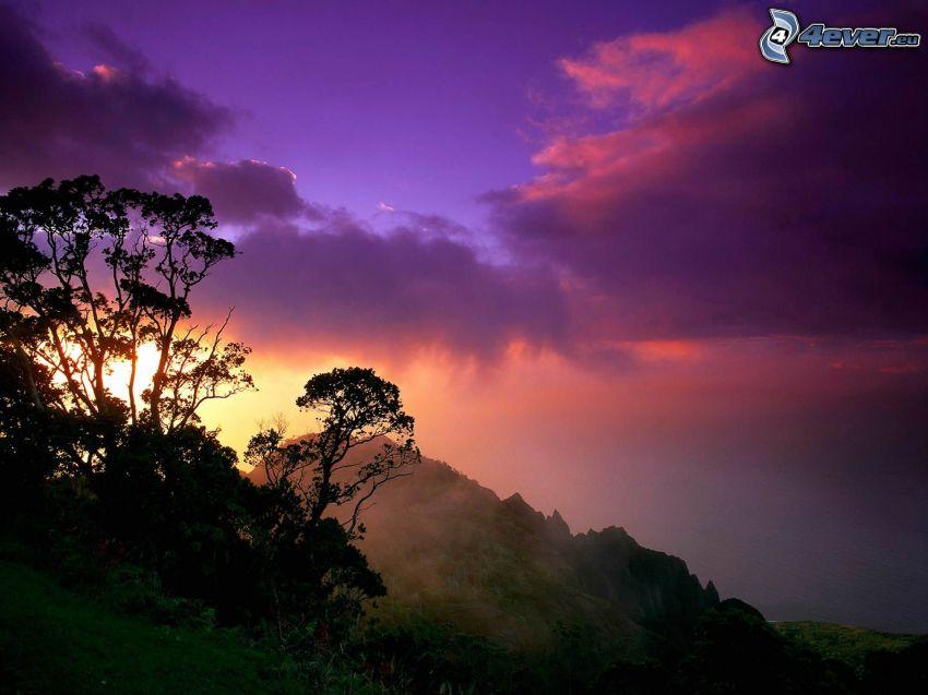 západ slnka za kopcom, silueta stromu, fialová obloha