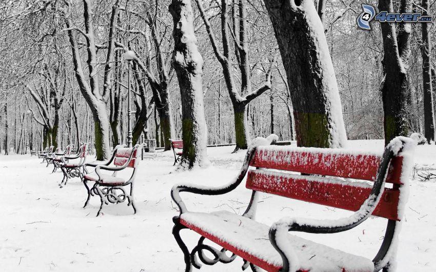 zasnežený park, zasnežené lavičky