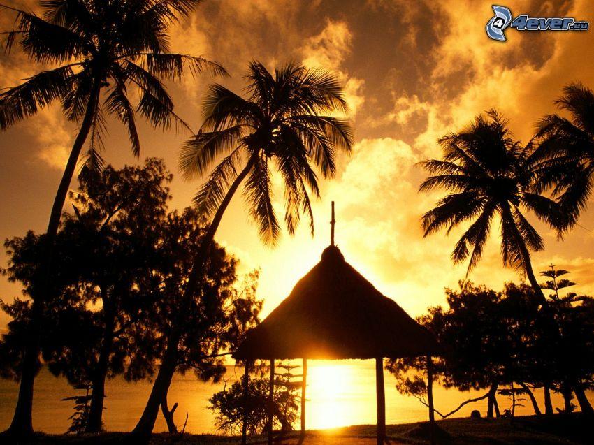 altánok, palmy na pláži, západ slnka za morom