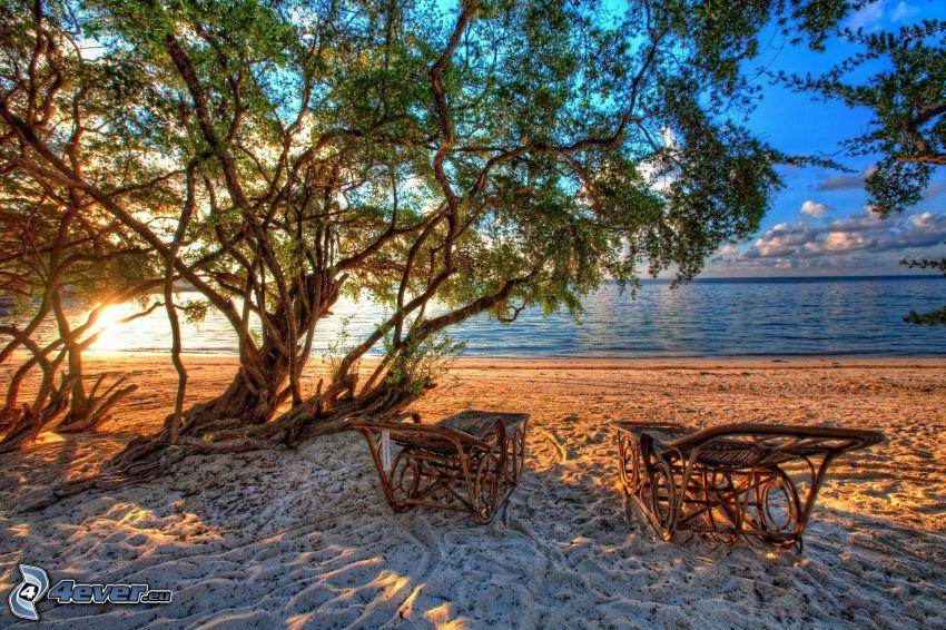 lehátka, pláž, more, stromy, HDR