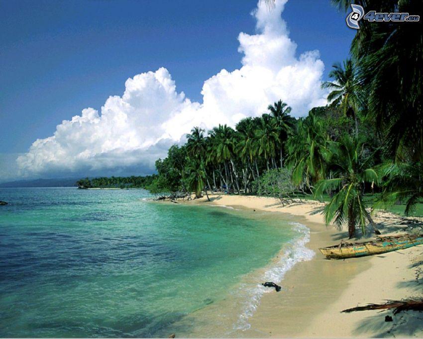 palmový ostrov, piesočná pláž, opustený čln, more