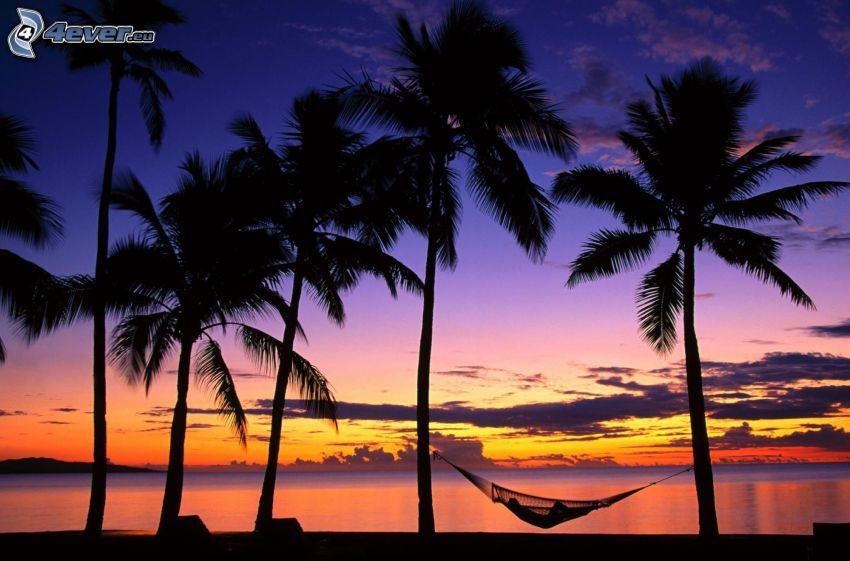 pláž po západe slnka, palmy, siluety, sieť na ležanie, silueta ženy