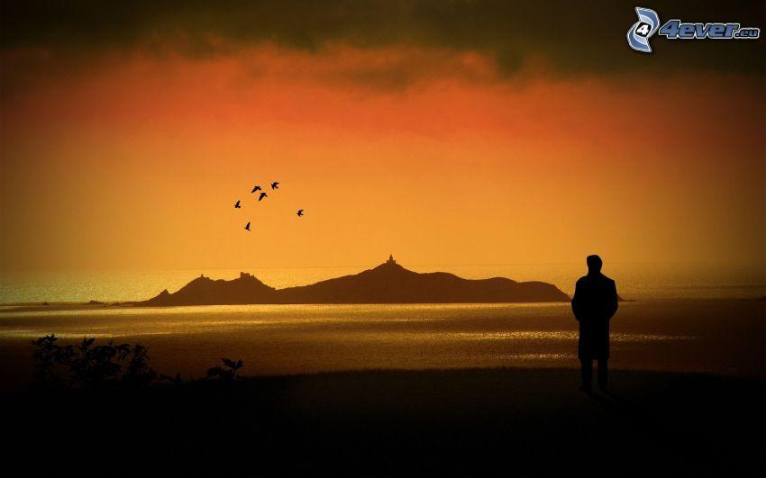 pláž po západe slnka, silueta chlapa, ostrovček, vtáky