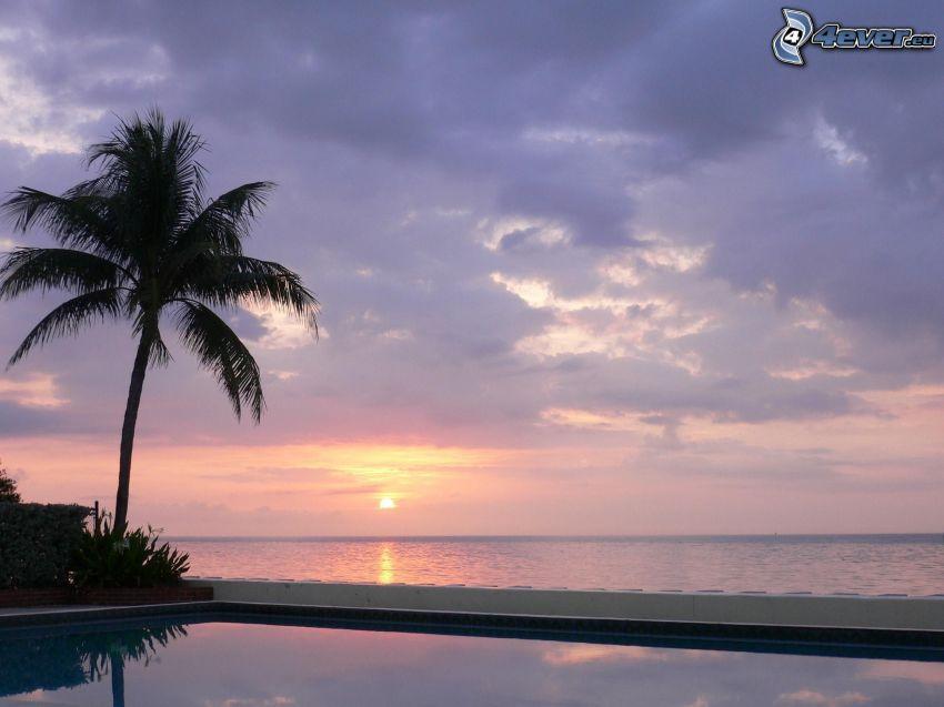 západ slnka za morom, palma, bazén