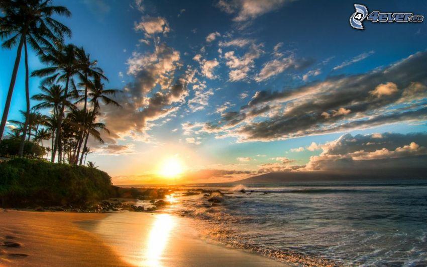 západ slnka za morom, piesočná pláž, oblaky, palmy