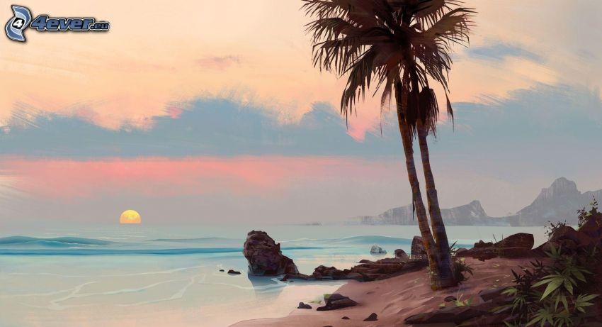 západ slnka za morom, pobrežie, palma