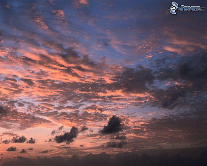 ružová obloha, oblaky