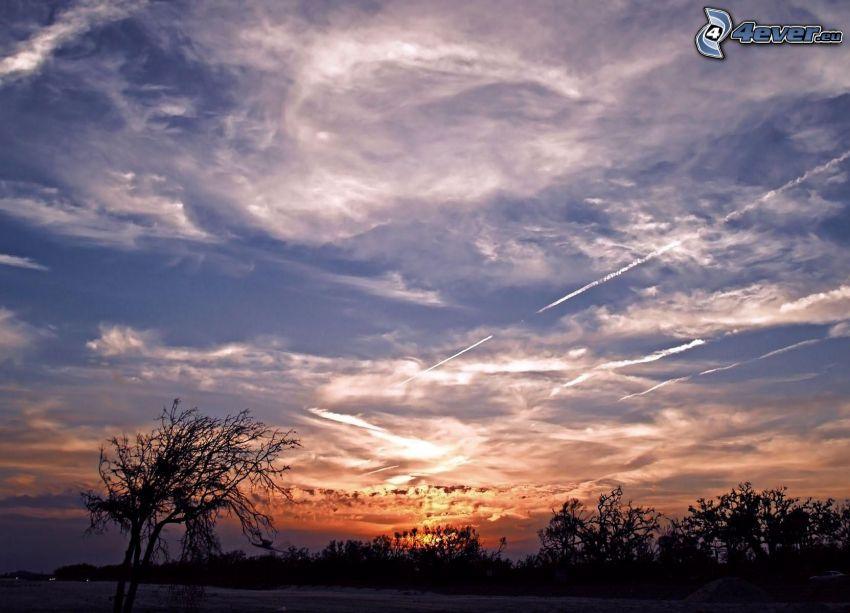 západ slnka, siluety stromov, oblaky