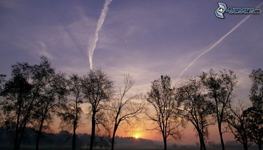 západ slnka za kopcom, siluety stromov, kondenzačné stopy