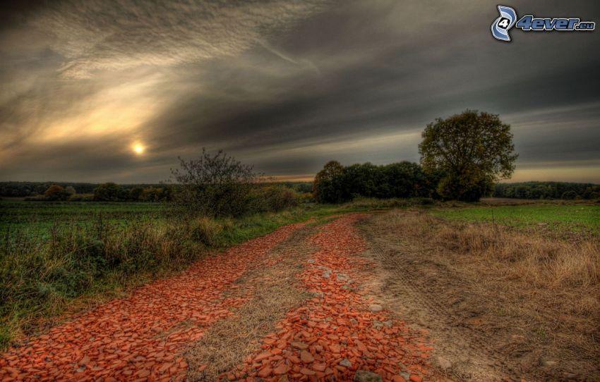 poľná cesta, polia, slnko, tmavá obloha