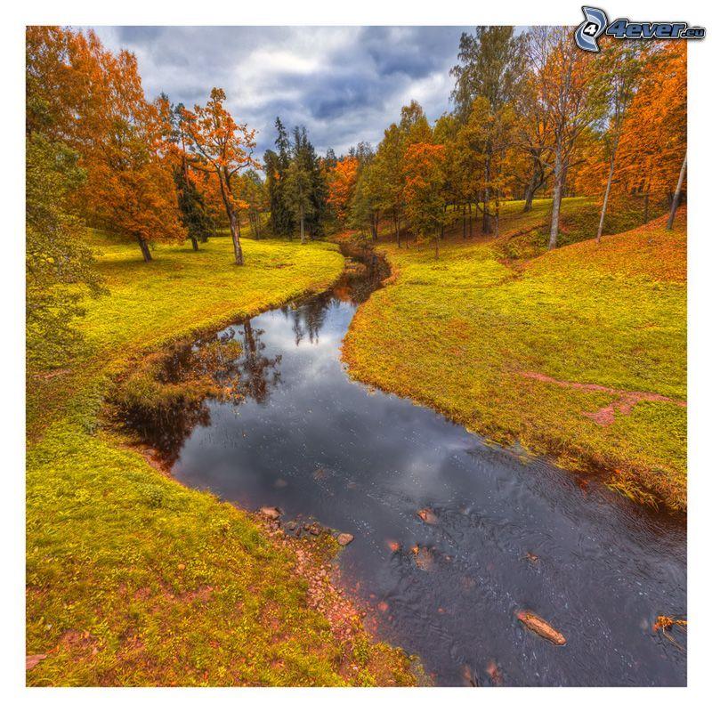 potok, farebné jesenné stromy
