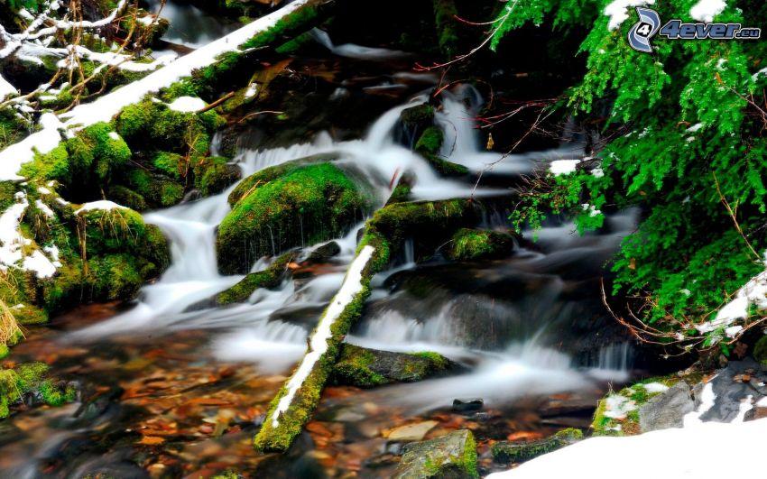 potok, vodopády, zeleň