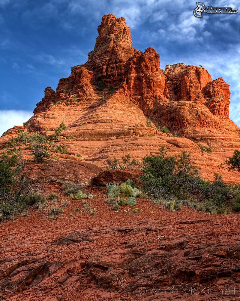 Sedona - Arizona, skaly, kaktusy