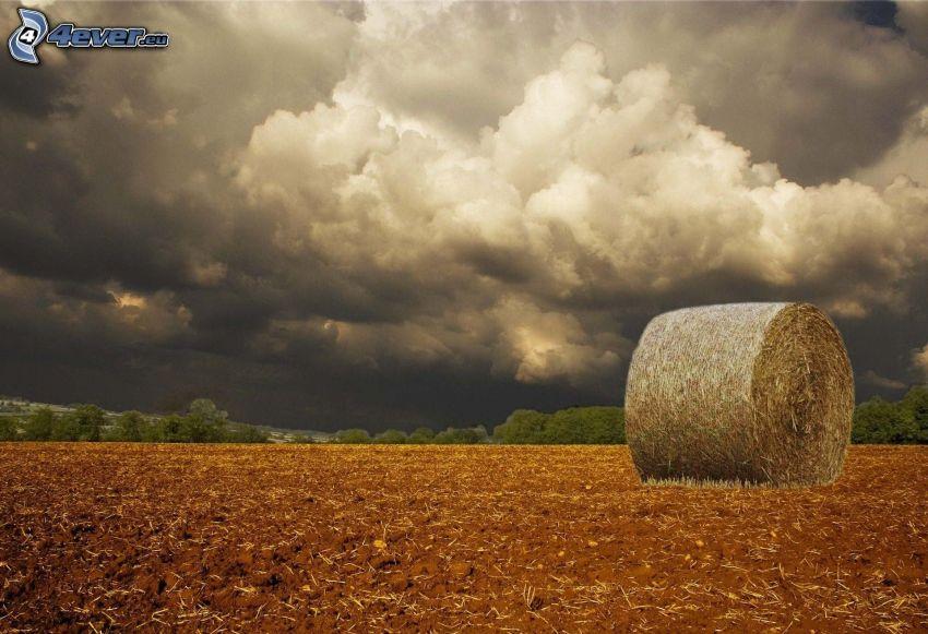 seno po žatve, búrkové mraky