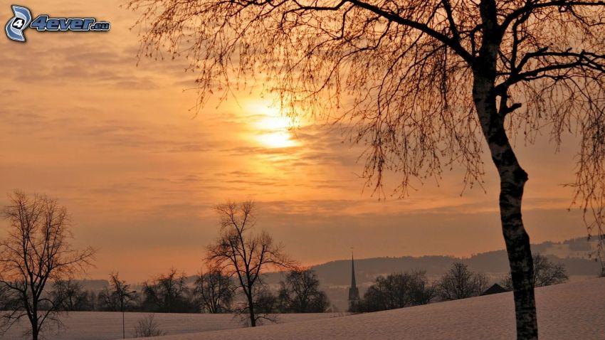 slnko za oblakmi, stromy, oranžová obloha