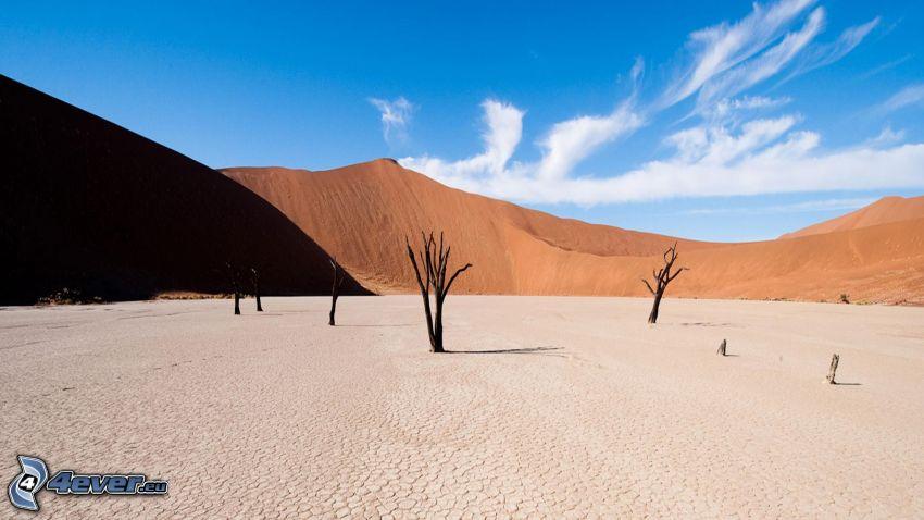 Sossusvlei, piesočná duna, suché stromy, praskliny