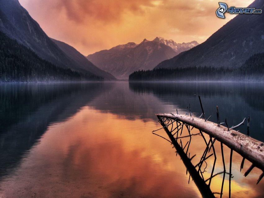 večerné pokojné jazero, suchý kmeň, kopce, západ slnka