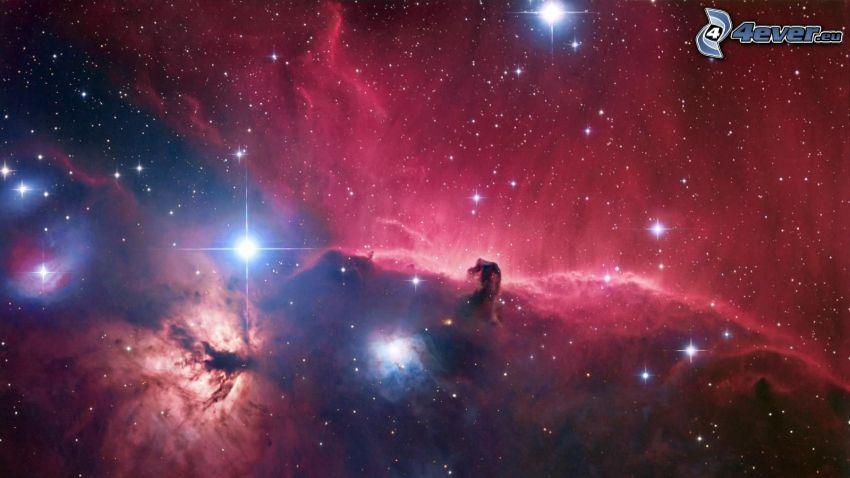 Hmlovina konská hlava, hmloviny, hviezdy