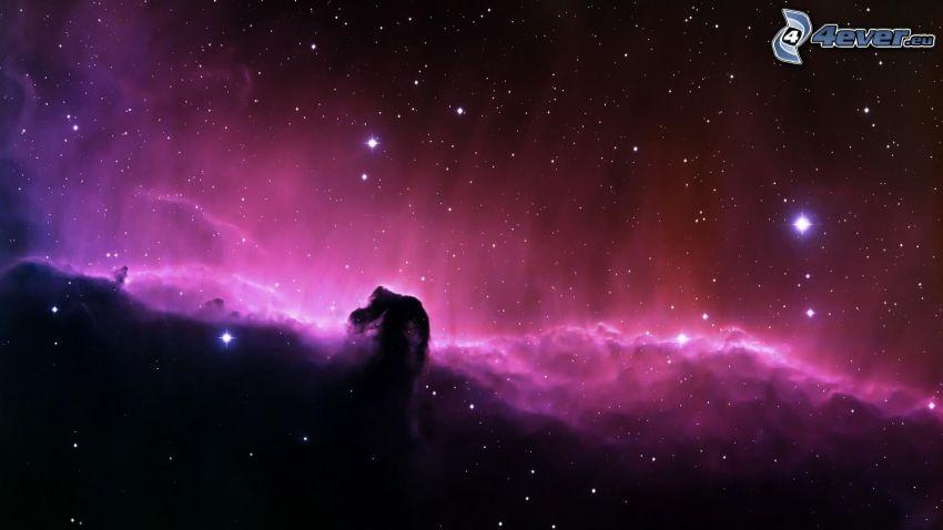 Hmlovina konská hlava, vesmír, hviezdy, hmlovina Orion