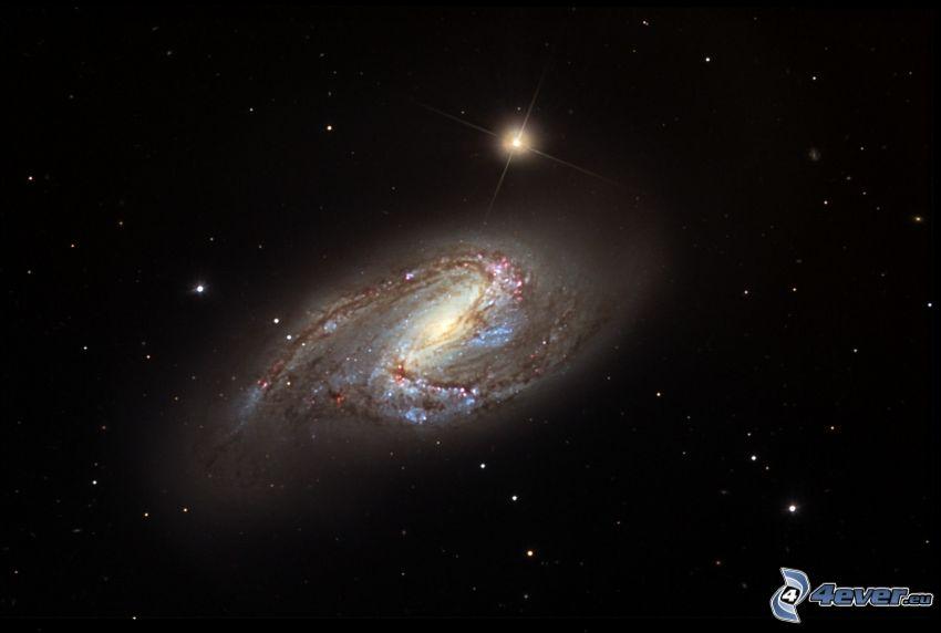 M66, špirálová galaxia, hviezdy