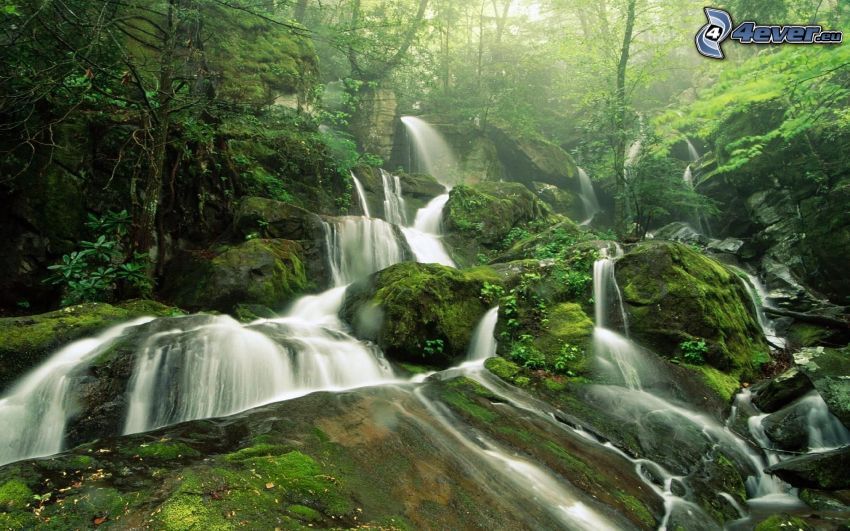 vodopády, zeleň