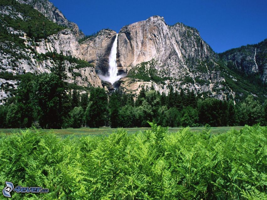 Yosemitský národný park, vodopády