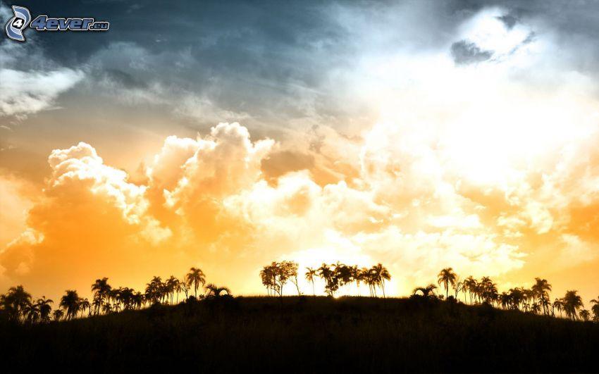 západ slnka za kopcom, palmy, oblaky
