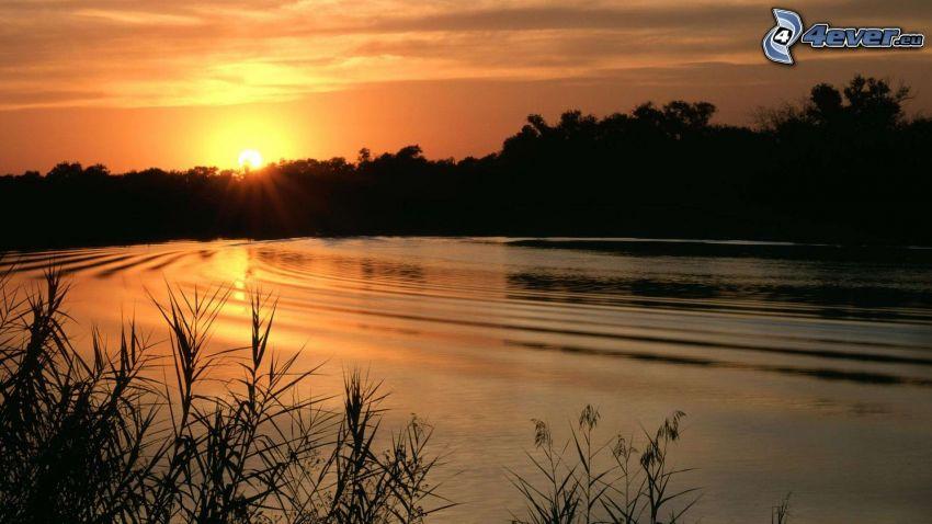 západ slnka za lesom, jazero