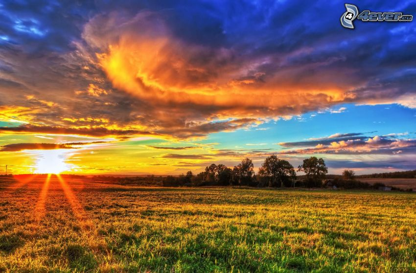 západ slnka za lúkou, oblaky, stromy