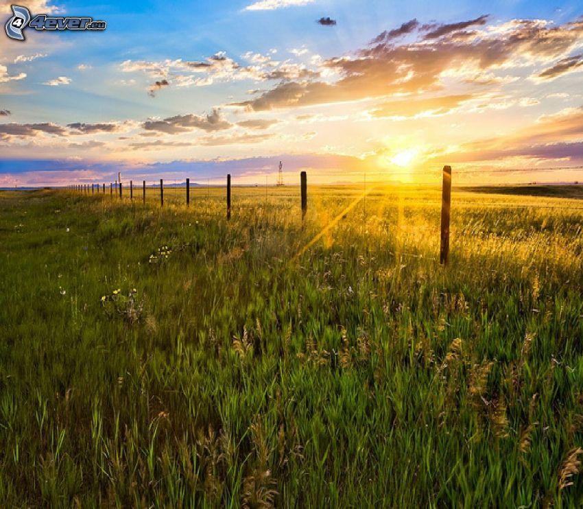 západ slnka za lúkou, tráva, drôtený plot, oblaky