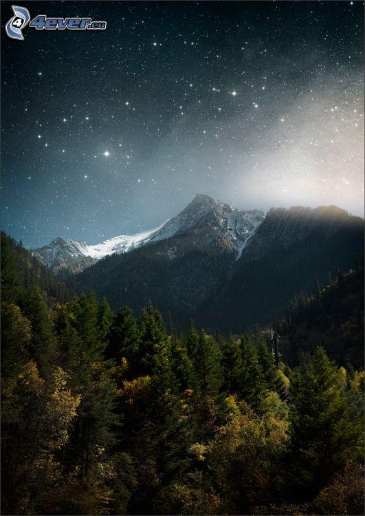 zasnežené hory, hviezdna obloha, ihličnaté stromy
