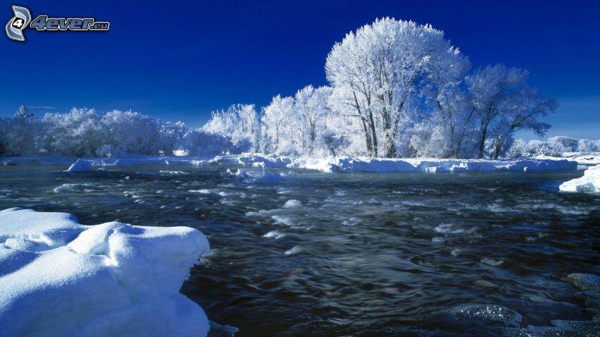 zimná rieka, zasnežené stromy