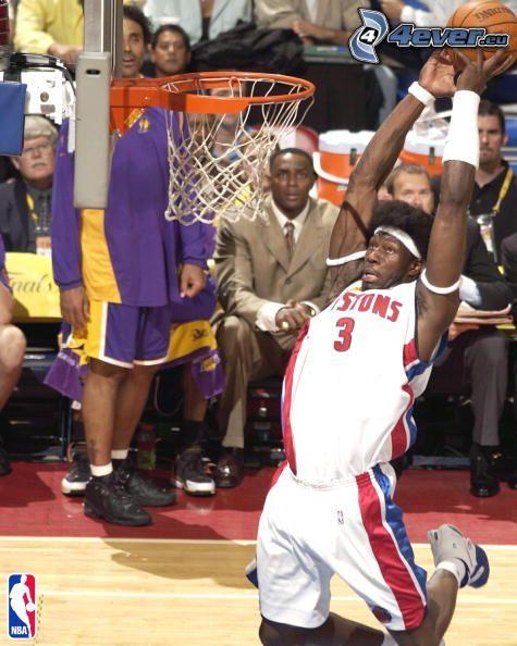 Ben Wallace, NBA