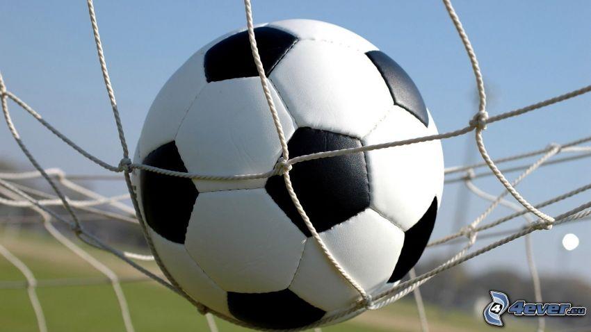 futbalová lopta, sieť
