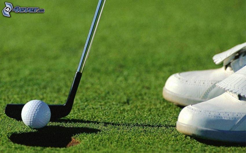 golf, golfová loptička, golfová palica, jamka