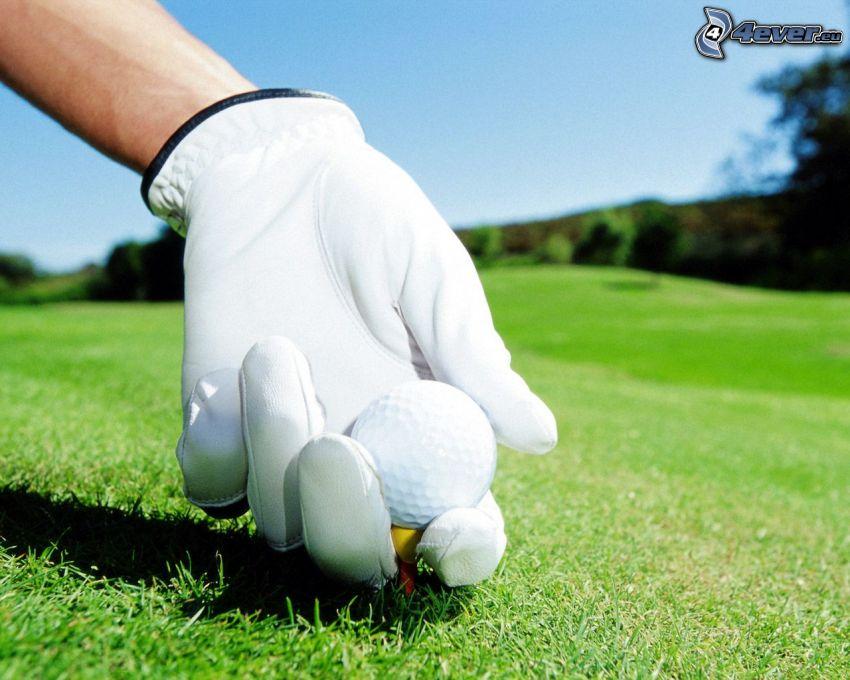 golf, golfová loptička, rukavice, trávnik