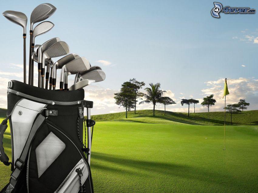 golfové ihrisko, golfové palice, palmy