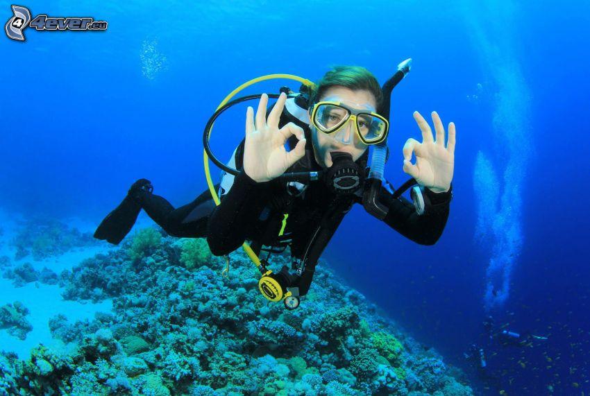 potápač, koraly, morské dno