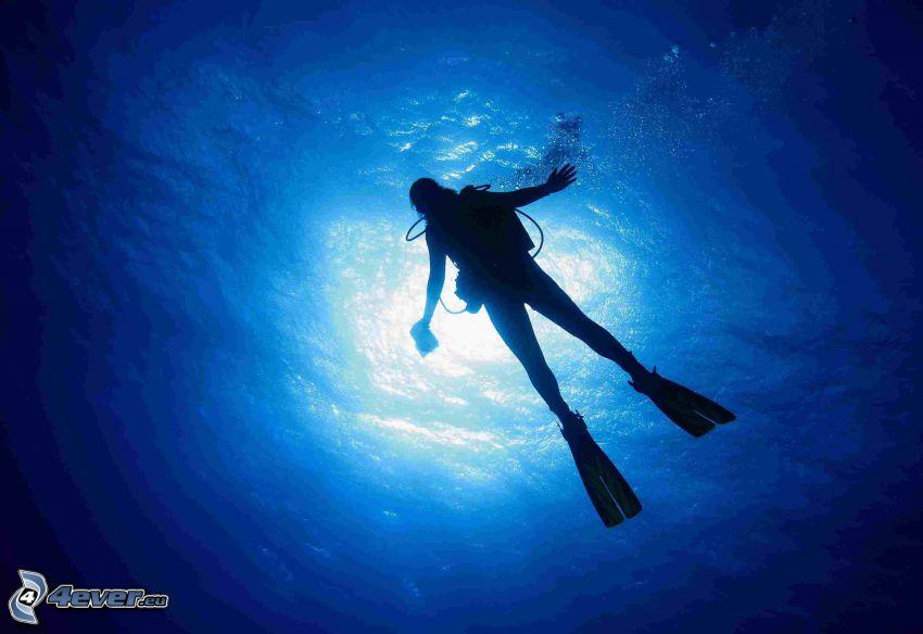 potápač, slnečné lúče