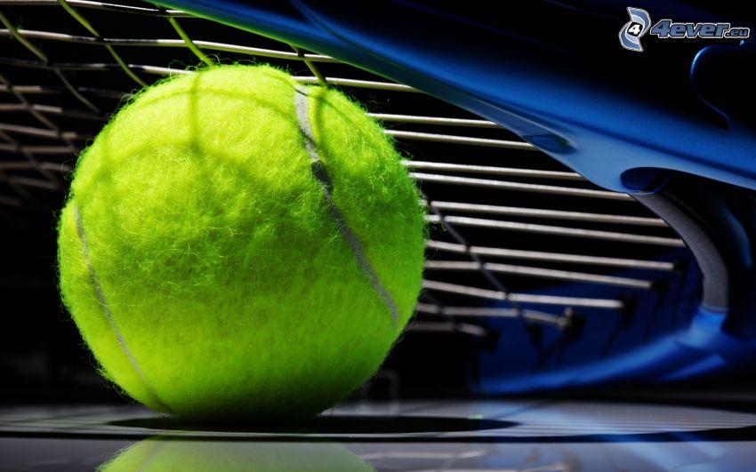tenisová loptička, tenisová raketa