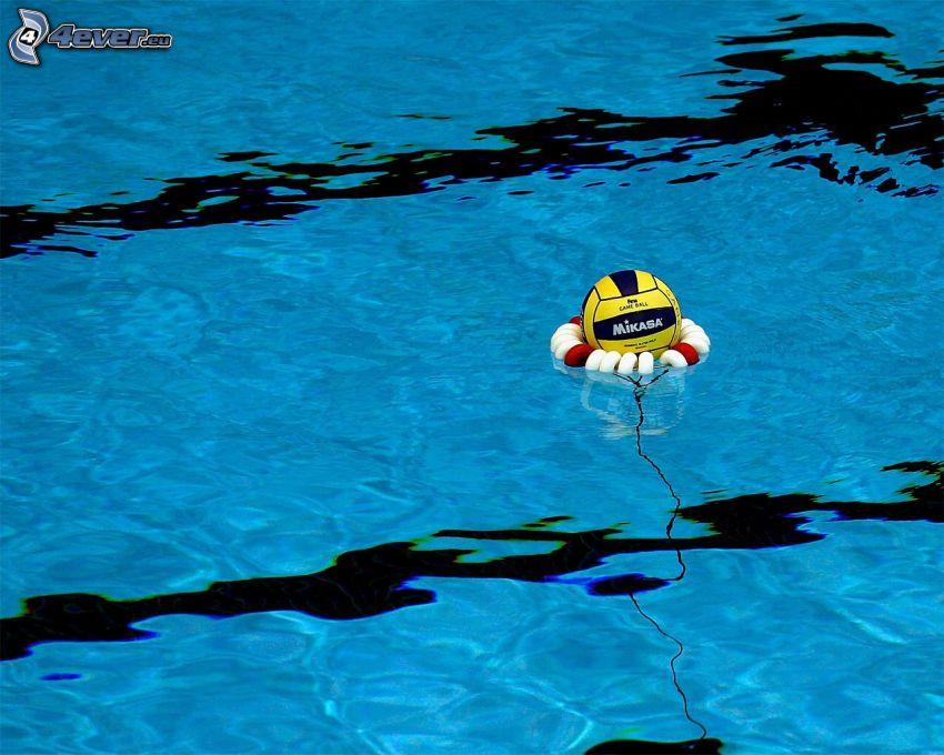 vodné pólo, lopta, bazén