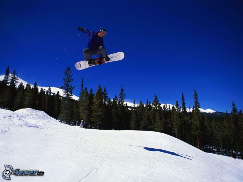 snowboardový skok, les