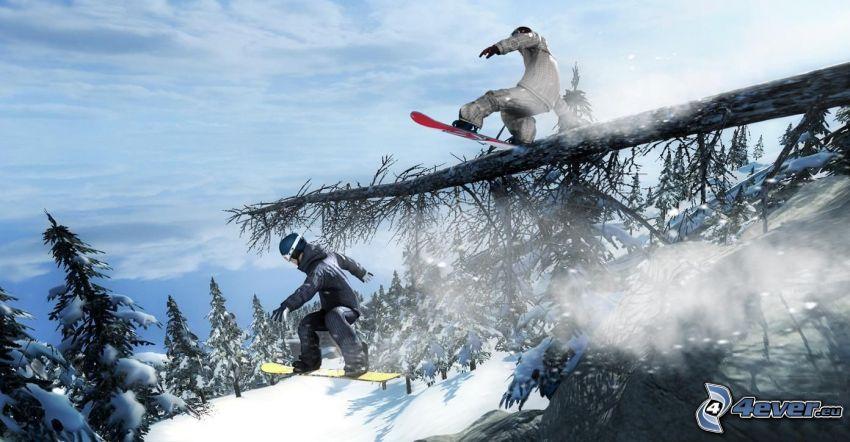 snowboardový skok, snowboardisti, zjazd, adrenalín, ihličnaté stromy, kmeň