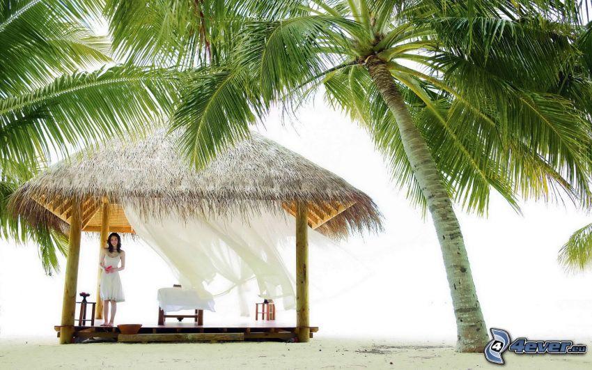 altánok, palmy na pláži