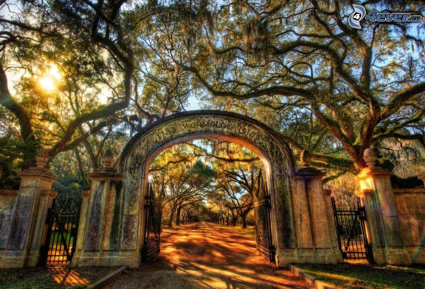 brána, chodník, stromy, HDR